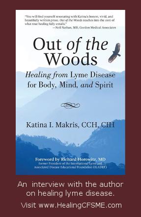 healing lyme disease book